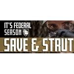 rebate-save-and-strut||