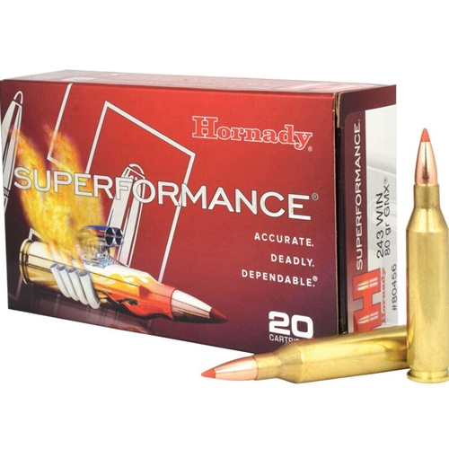 Hornady Superformance 243 Winchester Ammo 80 Grain GMX BT